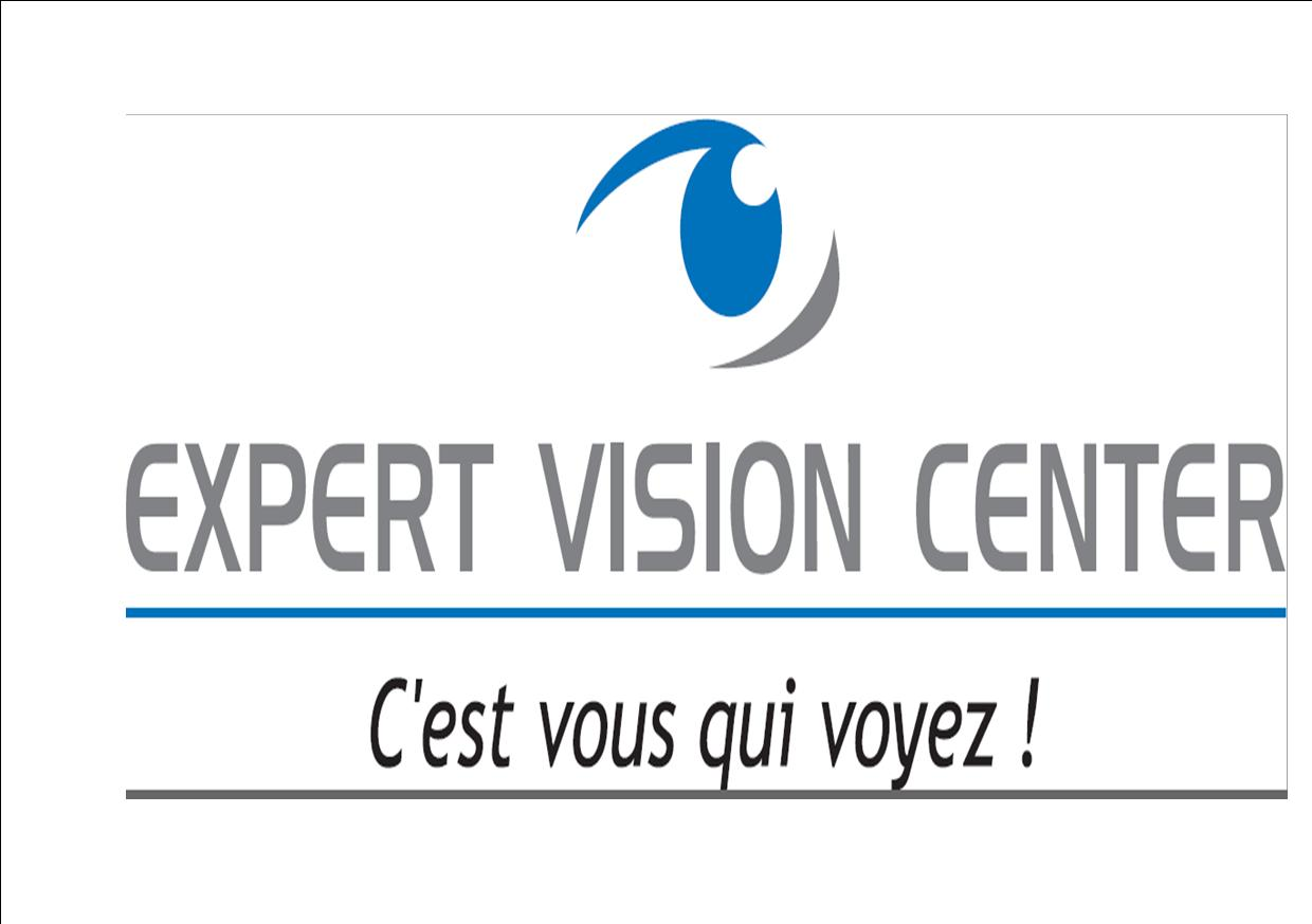 Expert Vision